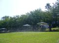 ガーデン水撒き.JPG